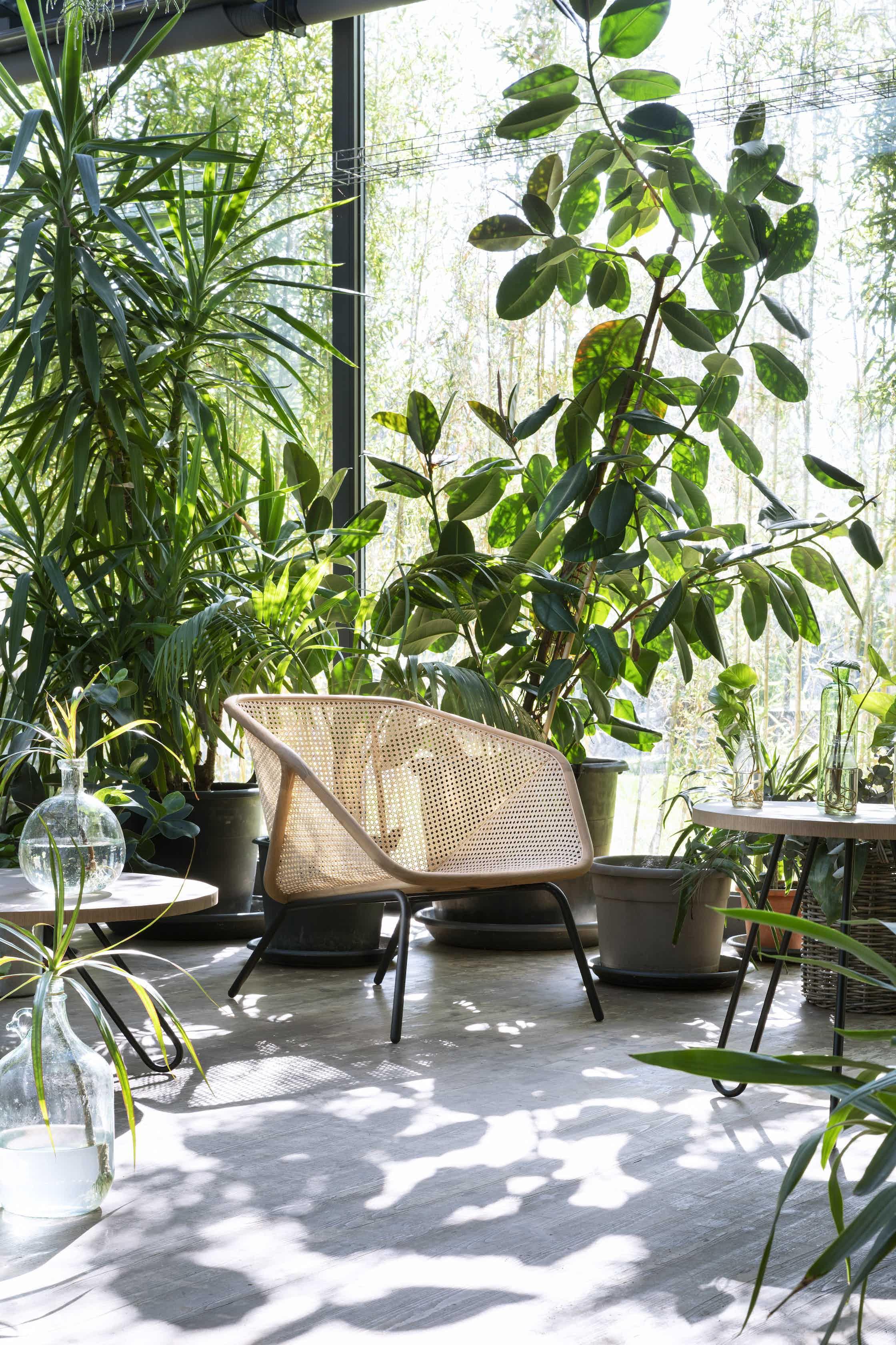 Colony armchair 1