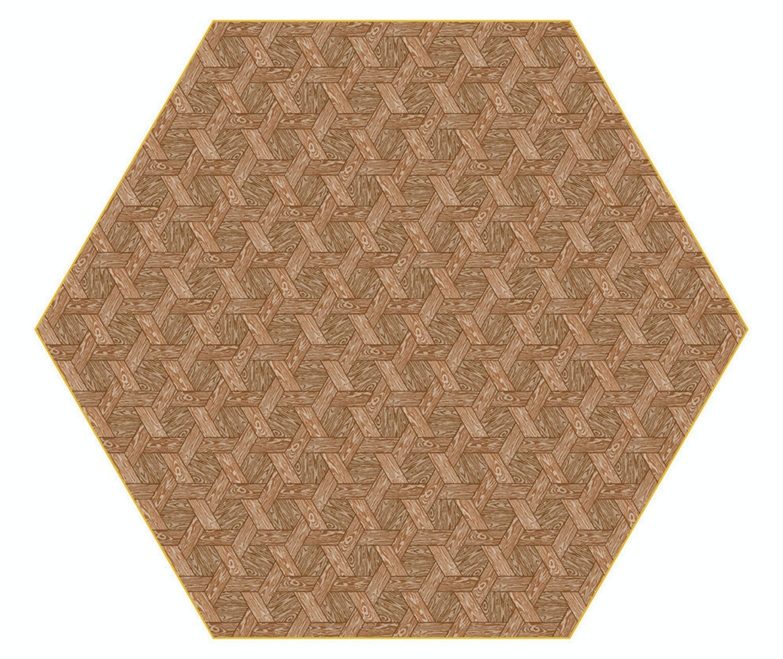 Hexagon Carpet Brown By Studio Job For Moooi Carpets 300Dpi Moooi 1