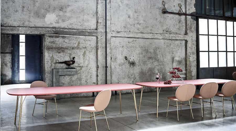 Tacchini furniture kelly c chair pink dining insitu haute living