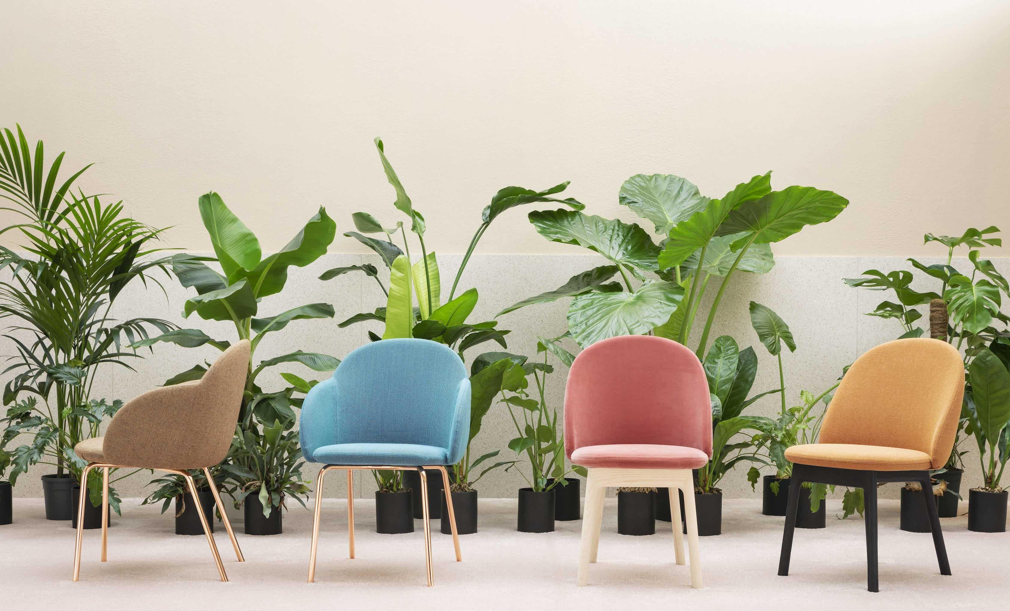 Miniforms-iola-armchair-group-haute-living
