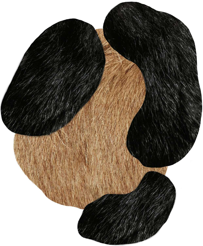Moooi Carpets Bearded Leopard Rug Haute Living