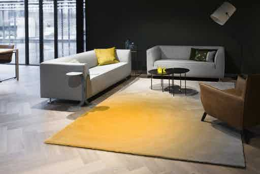 Carpet-sign-cameleon-330050-insitu-haute-living