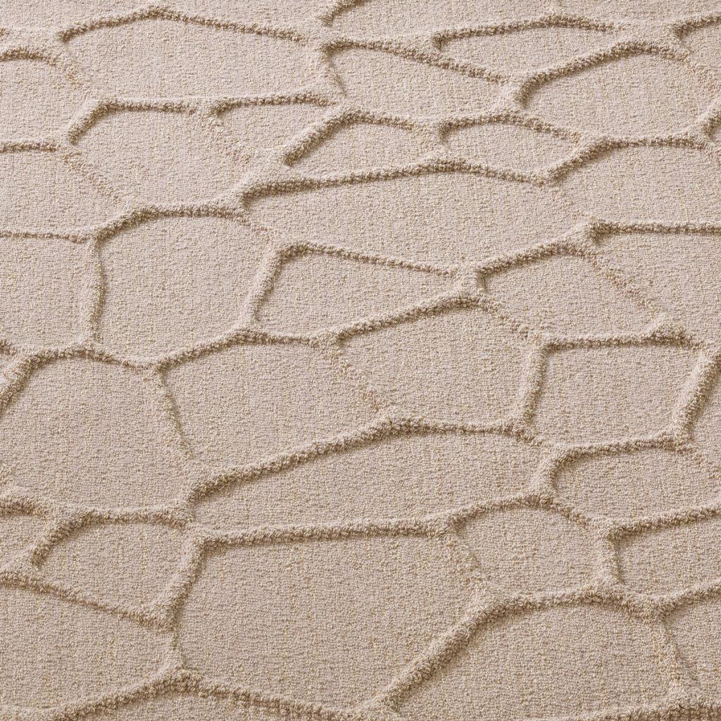 Carpet Sign Surfaces Cellular Hr