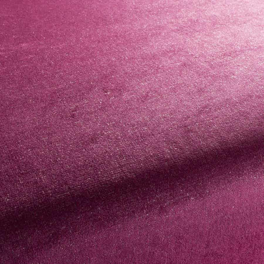 Jab-fabrics-pink-cheeky-plain-upholstery-haute-living