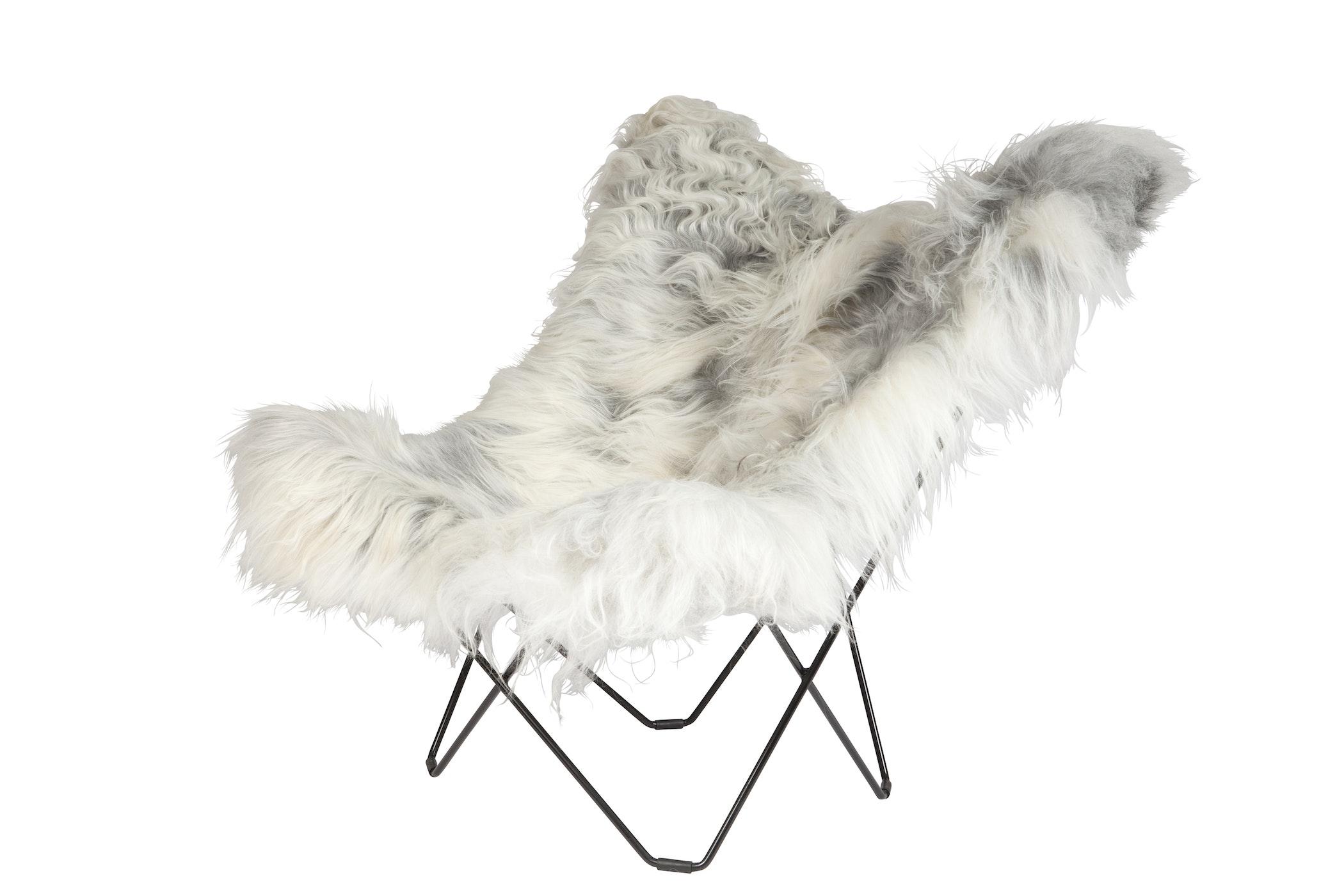 9575 Iceland Mariposa Wild Grey Black Coated Frame 1