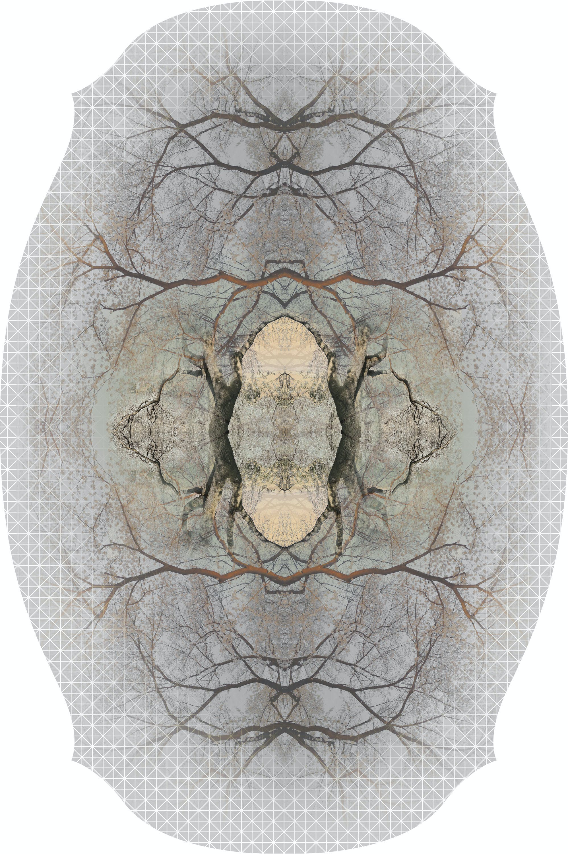 Diamond Tree By Edward Van Vliet For Moooi Carpets 300Dpi Moooi 1