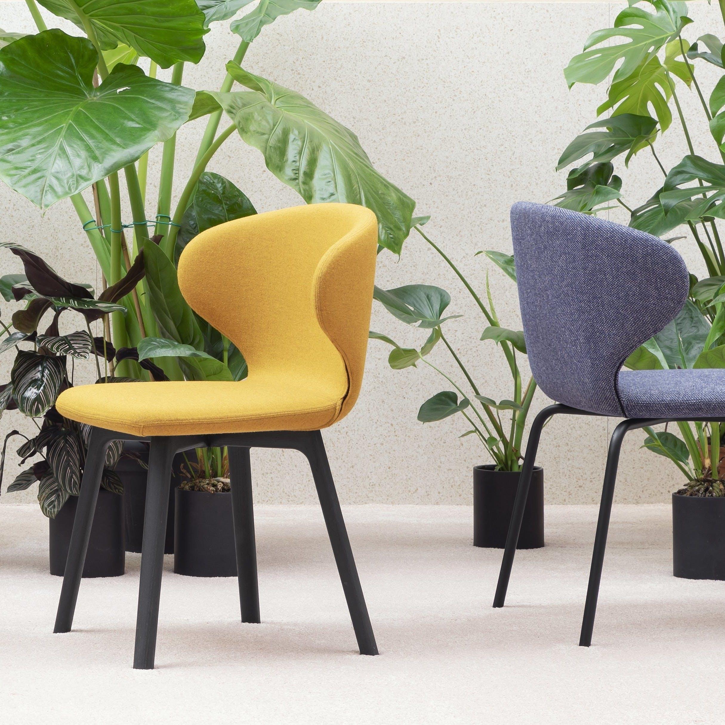 Miniforms Mula Chair Group Haute Living