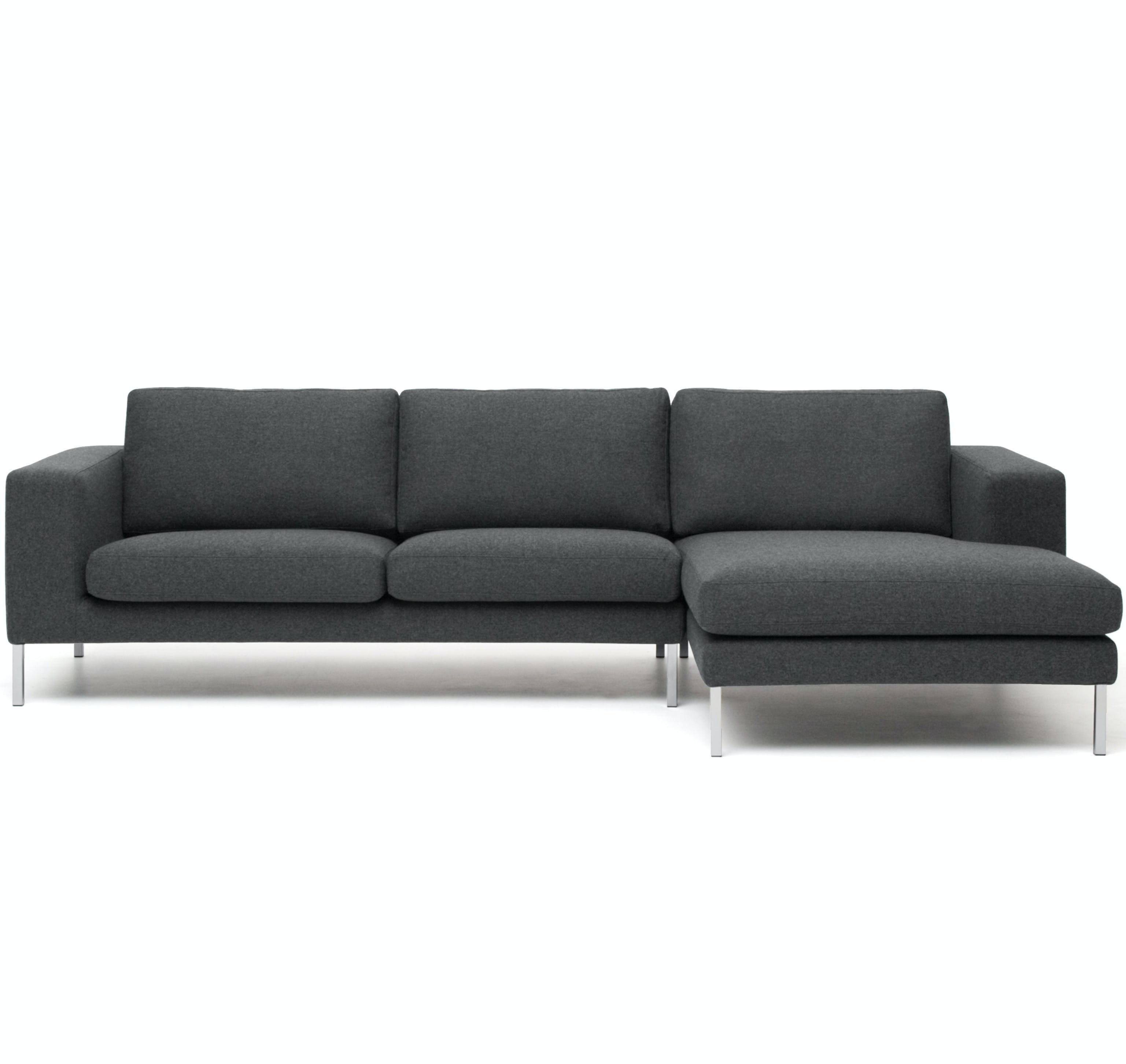 Neosectional00