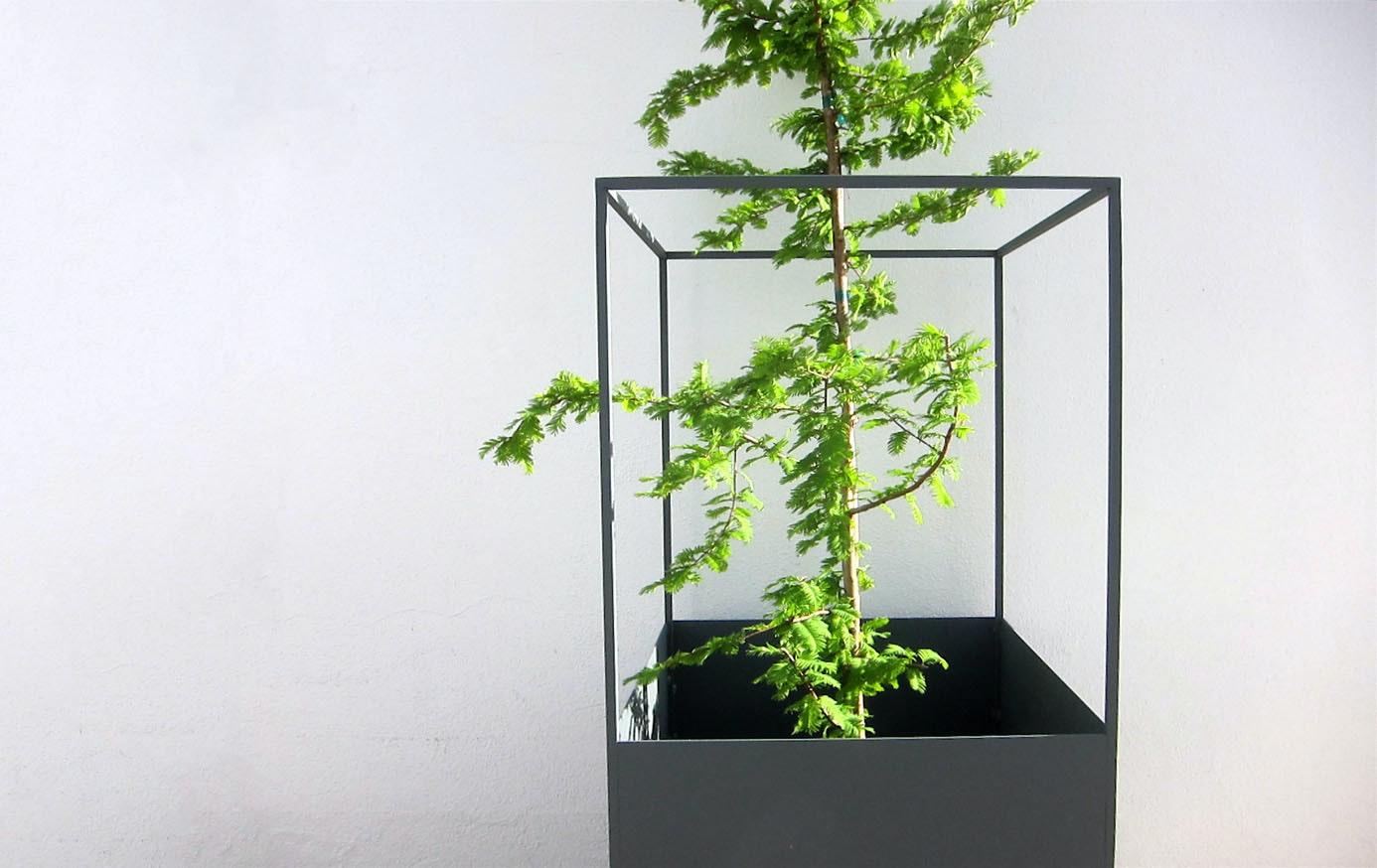 Phase Design Reza Feiz Skyline Planter 51